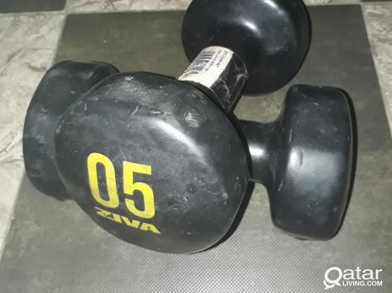 ZIVA Hand Weight 5 KG