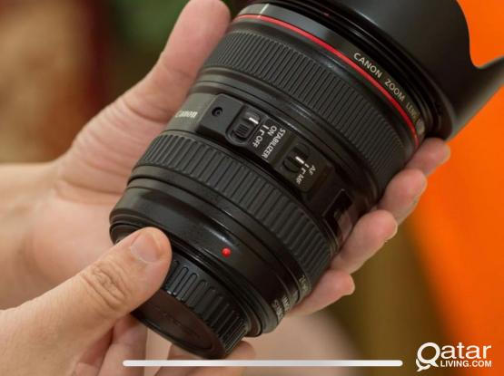 Canon 24-105 F4 L USM