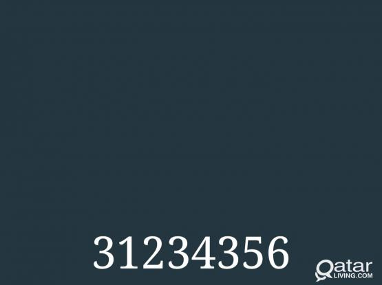 Vodafone Sim 31234356