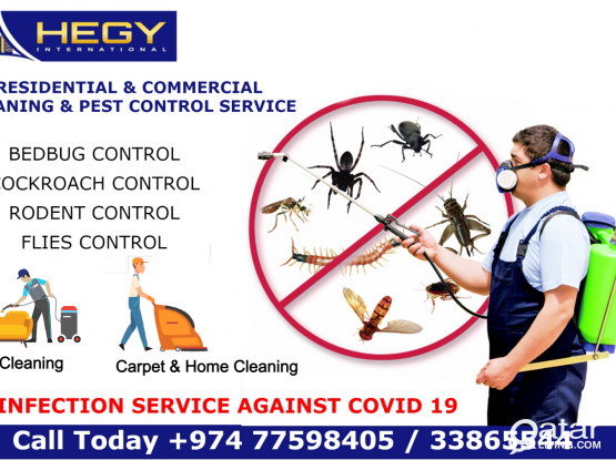 Pest Control - Cleaning Service - Sanitation Service COVID 19