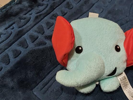 Fisherprice baby toy