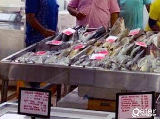 FISH STAND FOR SALE
