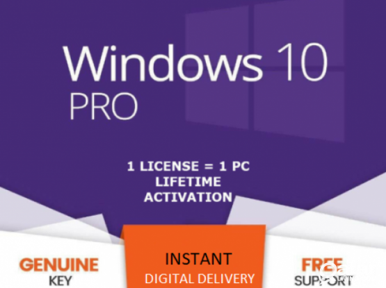 Windows 10 Pro key/CD/Sticker