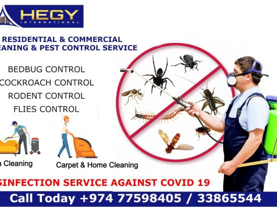 Cleaning Service Pest Control Service