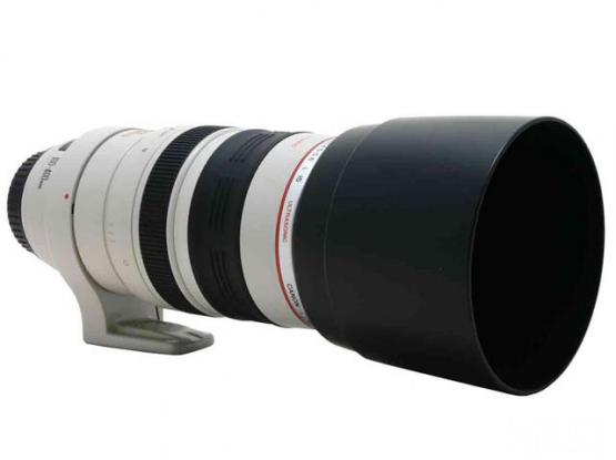 Canon 100-400 Lens With Hood