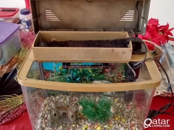 aquarium fish tank with all accessories for sale