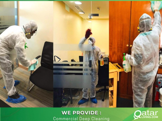 Pest Control & Disinfection Services call on 66444992 / 50781122