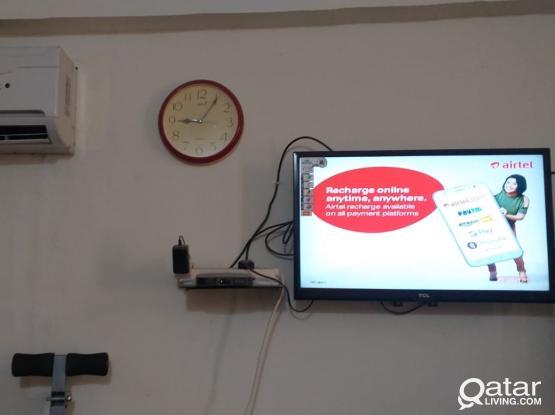 Single room for Executive Bachelor (Aug-Sept, 2 Months, QAR -1050)