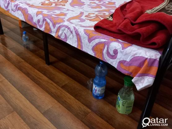 Bed Space for rent ,nuaija near mamoura complex,olive International school
