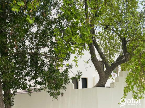3bhk Spacious villa in Hilal