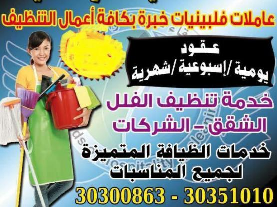Cleaning Services For Houses عاملات تنظيفات خبره
