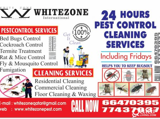 We're the pest police! Disinfection & Pest control services. Please call 66470395