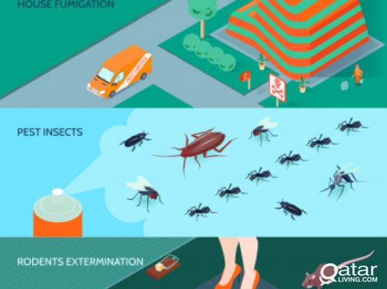 Pest Control with 3 months guarantee - Muaither/Rayyan/Al Waab/Azizia/Abu hamour - 7446 4457