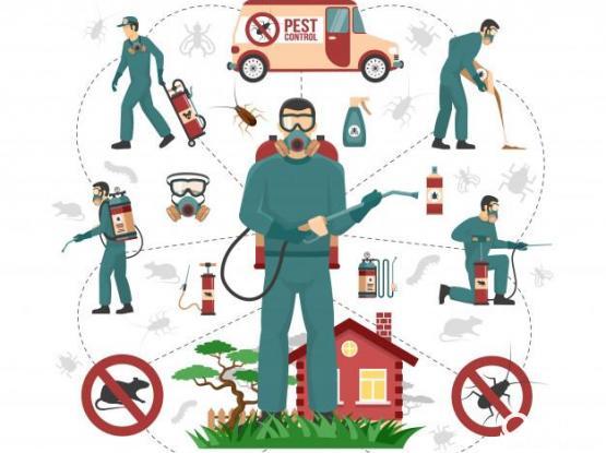 Pest Control Services – Al Wakra / Mesaieed /Al Wukair - 74464457