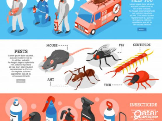 All Kinds of Insects control - Any where in Qatar - 74464457 @24/7