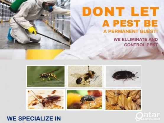 looking for pest control services?!
