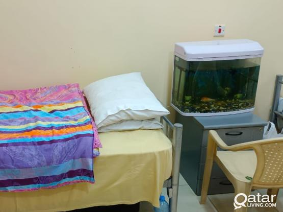 FULLY FURNISHED BED SPACE AVAILABLE FOR KERALITES IN NEAR CAPITAL POLICE STATION