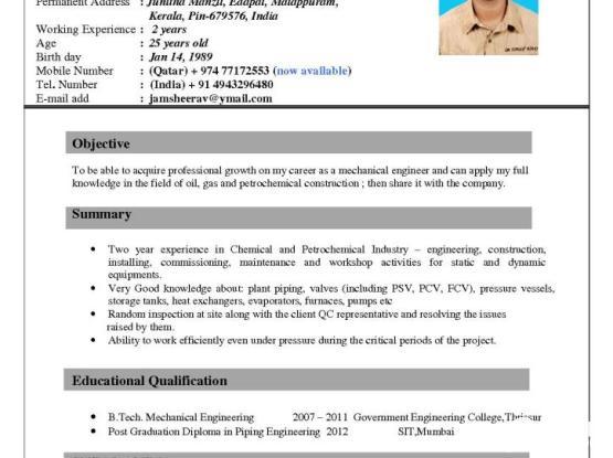 Seeking Job- Mechanical Engineer/Piping Engineer | Qatar Living