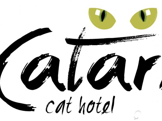 Luxury Cat Hotel Looking for Driver/Animal Care Assistant