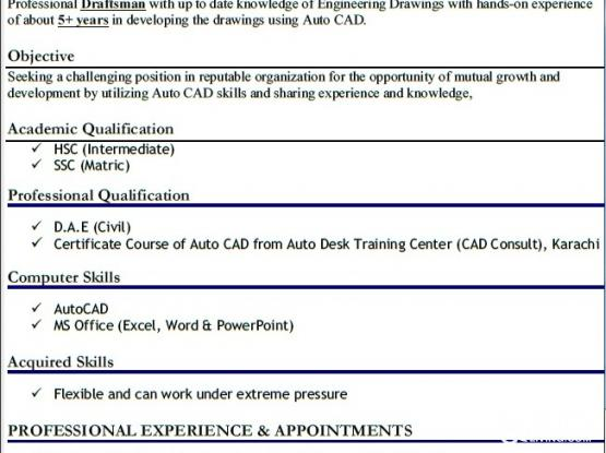 Civil/Structural Draftsman / CAD Operator | Qatar Living