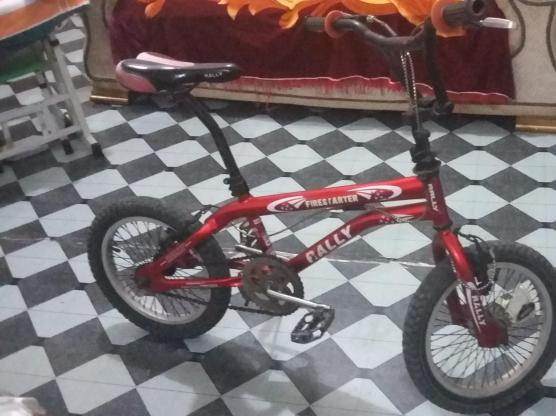 Sports cycle-Rally (5-12 years)