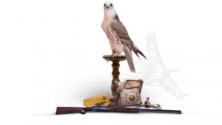 Katara International Hunting and Falcons Exhibition 2021