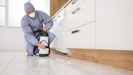 How to request for MME's free pest control services
