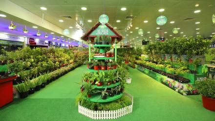 'Go Green Grow Green' promotion begins in Safari outlets