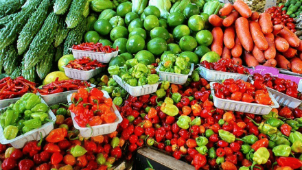 Permit will be required to import vegetables and fruits in Qatar: MME