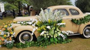 Al Wasmi Gardens Festival