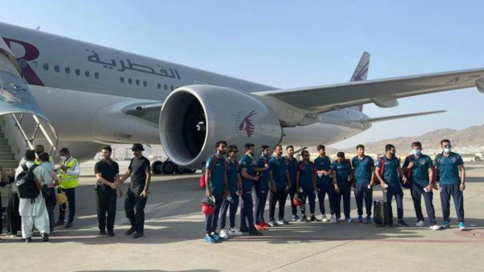 Afghanistan's national cricket team to arrive in Doha for training