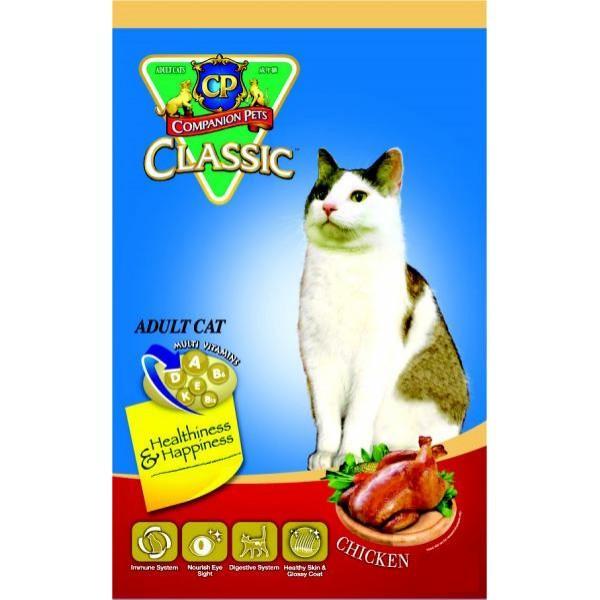 Persian Cat (kitten) Extreme Flat Face peak face orginal persian breed | Qatar Living