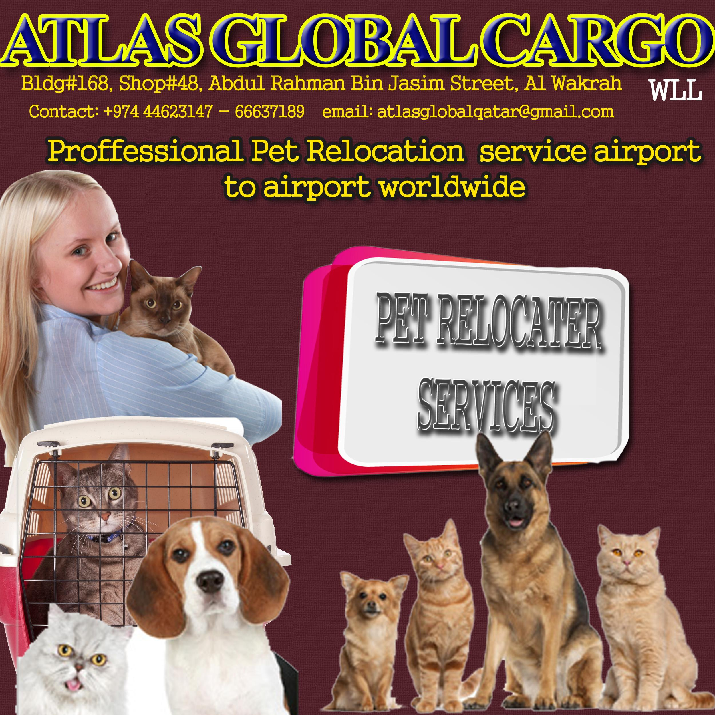 Pet Relocation Services*** | Qatar Living