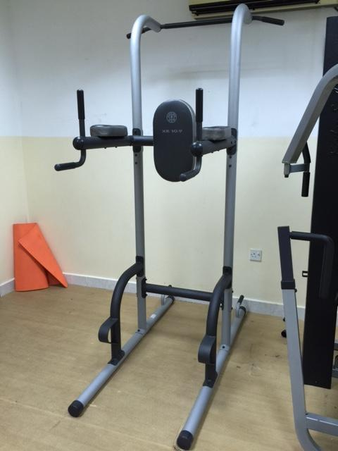 Strength training home gyms golds gym xr power tower arms
