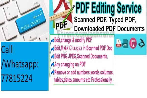 Freelancer Data Entry/ Document(PDF,Word, Image etc )/ Audio