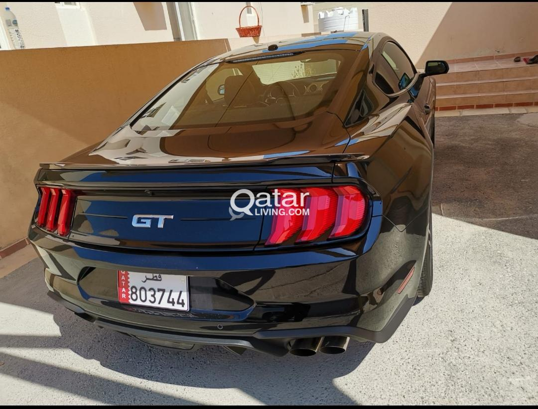 Mustang gt 5 0 brand new for sale