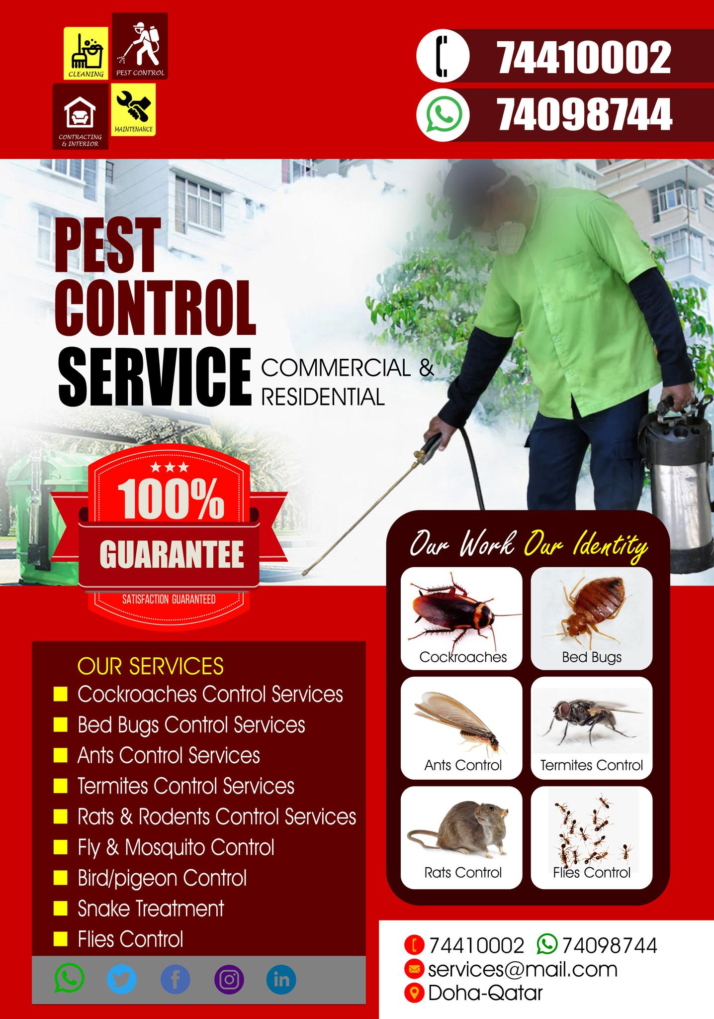 Pest Control Service at Affordable Price - Call On