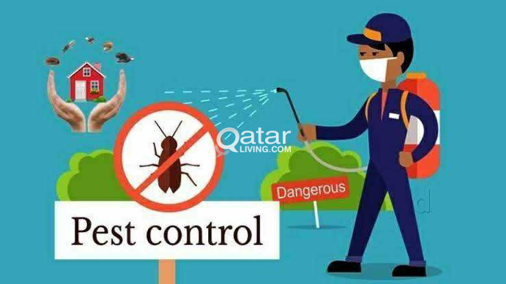 Cleaning  Pest Control Service-31090109
