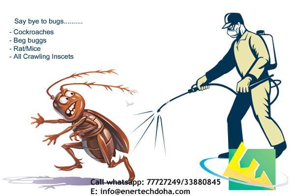 Pest Control & sanitization services - Messaid/Al