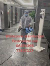 whitezone Disinfection & pestcontrol call 66470395