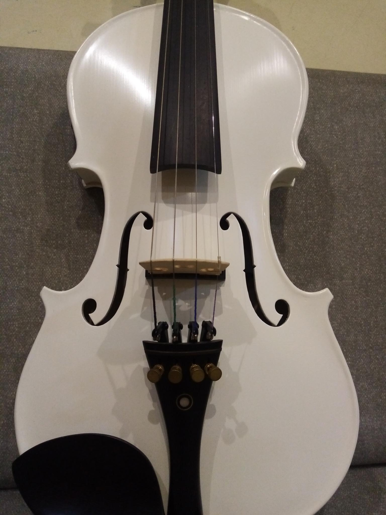 White acoustic & Electric Violin