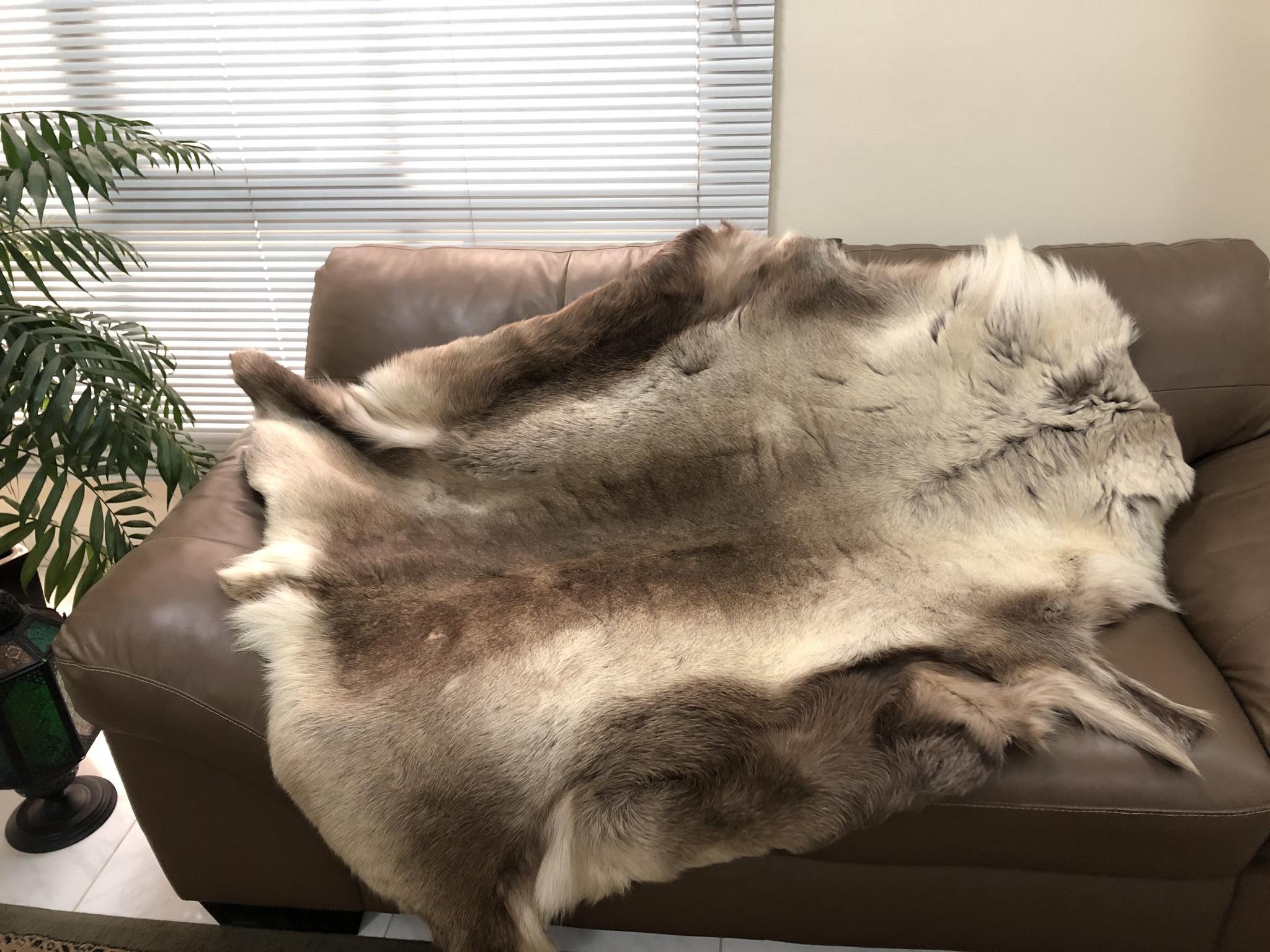 Scandinavian Reindeer Hide *As New*