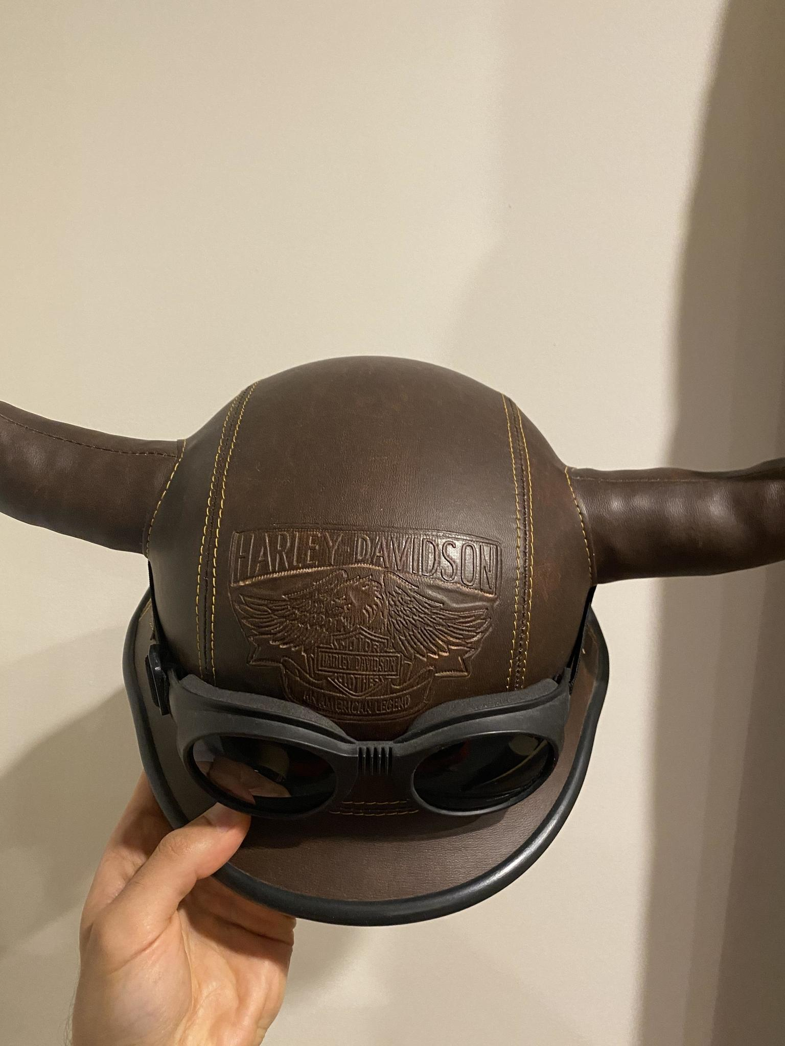 Motorbike helmet with horns and harley davidson wr