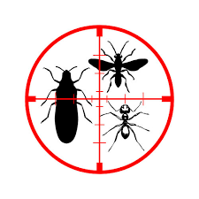 PEST CONTROL /CLEANING /33263545