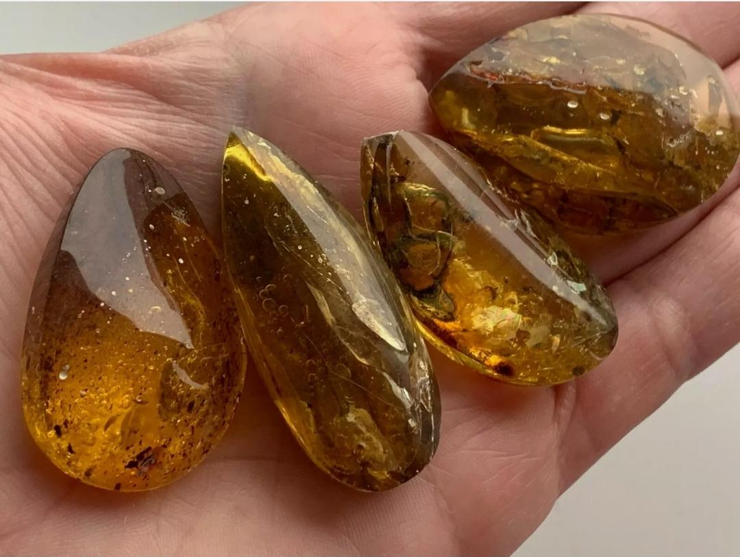 Natural amber stone with insect