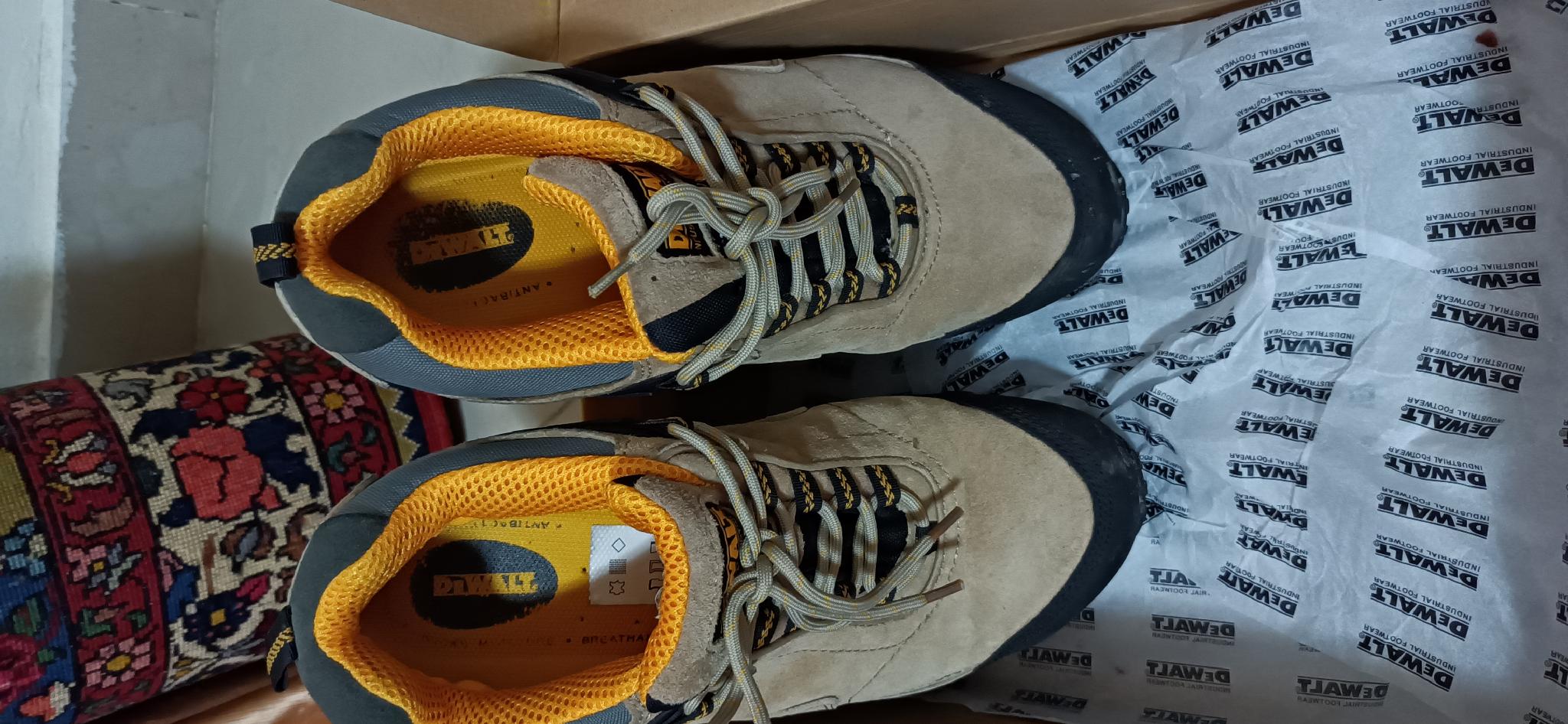 Industrial Safety Shoe DEWALT (Brand New)