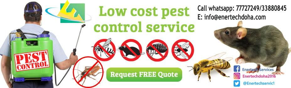 Sanitization/disinfection and pest control service