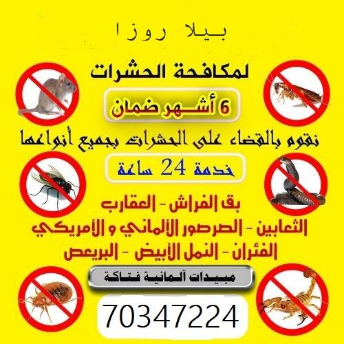 Bella Rosa Pest control and Disinfection treatment