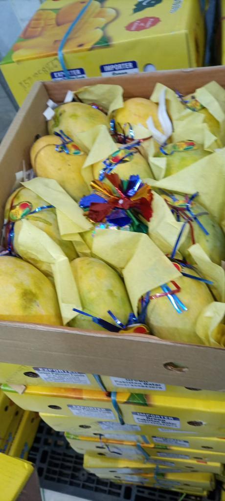 Fresh Mangos & Jamun And Apricot