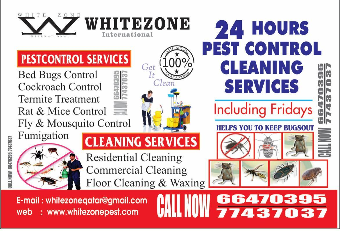 We're the pest police! Disinfection & Pest control